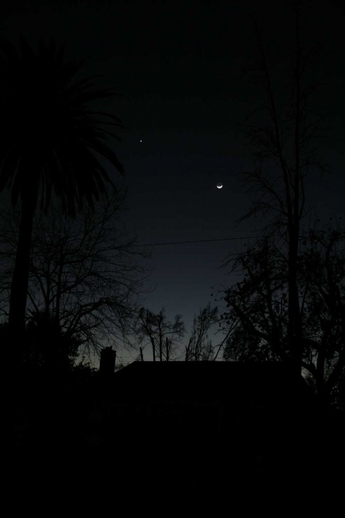 Venus is just 8 degrees away from the Moon tonight.